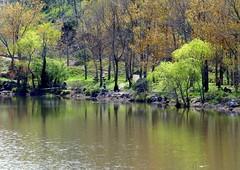 lac de l'Avellan (4) (b.four) Tags: lake lago lac var coth avellan rubyphotographer coth5 201445 ruby10 ruby15
