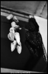 ( Digital Denial ) Tags: winter blackandwhite analog 35mm diy manitoba dauphin hotpeppers expiredfilm driedpeppers putup