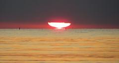 IMG_0050x (gzammarchi) Tags: italia mare nuvola alba natura sole paesaggio ravenna riflesso lidodidante