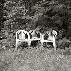 Three chairs (miya_moto) Tags: bw 120 6x6 rolleiflex neopan acros