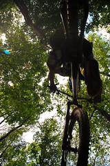 McLeod - 04 (FranzPisa) Tags: sport italia ciclismo luoghi genere montepisano
