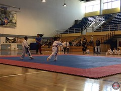 stefanou_15_5_2016_knockdown_12