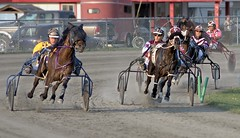 Course sous harnais ---------  Harness racing -------- Cursa de trotadors (Jacques Sauv) Tags: horses horse canada race caballo cheval track racing course qubec harness amateur trot piste sous cursa terrebonne harnais rgion lachenaie cheveaux attel lanaudire trotadors