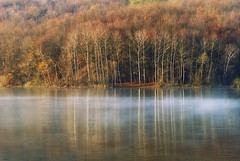0344 Fall Colours On Lake (Hrvoje Simich - gaZZda) Tags: autumn trees red orange reflection fall beautiful yellow forest nikon croatia nikond200 borovik sigma10528 gazzda hrvojesimich