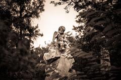 (marco sn) Tags: chile santiago general cementerio