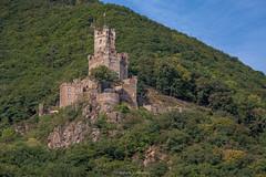 Sooneck Castle (mahesh.kondwilkar) Tags: germany avalon castlevalley rhinegorge sooneckcastle rhinecastles avalonwza avalonwzaday5