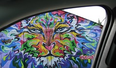 Drive-by shooting (jmaxtours) Tags: streetart toronto ontario grafitti tiger torontoontario