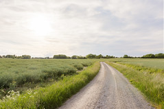 Country Road - stergtlands ln - Sweden (Nonac_eos) Tags: road se sweden country exposureblending highdynamicrangeimaging luminositymask canon6d ef1635f28lii stergtlandsln nonaceos