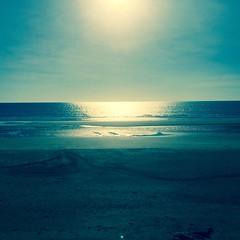 On the Way (Rantz) Tags: beach darwin 365 roger northernterritory mobilography rantz casuarinabeach doesanyonereadtagsanymore casuarinacoastalreseve mobilographypad2016 psad2016