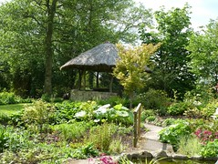 A little bit of Africa...In an English country garden (Orchids love rainwater) Tags: bridge trees england path may foliage hut watergardens hereford 2016 westonburymill