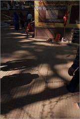 pilgrims, amarkantak (nevil zaveri (thank you for 10million+ views :)) Tags: trees light shadow people woman sunlight india man men religious temple photography photo blog women worship shrine photographer photos prayer religion stock images holy photographs photograph mp zaveri source pilgrim stockimages narmada nevil madhyapradesh amarkantak nevilzaveri maikibagiya