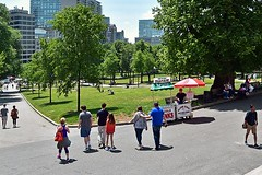 The Common in June (AntyDiluvian) Tags: park boston path massachusetts tourists shade common bostoncommon slope libertymall