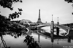 Paris under water (karmajigme) Tags: city travel blackandwhite paris water monochrome landscape nikon flood noiretblanc eiffeltower toureiffel