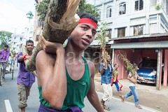 H504_3408 (bandashing) Tags: street trees red england people green manchester watch crowd logs sylhet bangladesh carry mentalhealth socialdocumentary aoa shahjalal bandashing akhtarowaisahmed treecuttingfestival lallalshahjalal