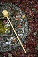 Konpuku-ji in Autumn (PV9007 Photography) Tags: autumn red rot fall leaves japan maple kyoto herbst momiji    kansai  herbstlaub japanischer 2015  ahorn laubfrbung konpukuji herbstlaubfrbung