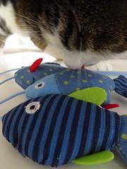 Fish (Pat's_photos) Tags: pet cat toy fish fabric macromondays stripes