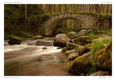 La monne [Olloix] (BerColly) Tags: longexposure bridge light france nature river pose google flickr riviere lumiere pont auvergne longue puydedome poselongue monne olloix bercolly