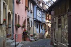 Eguisheim (Rolandito.) Tags: france frankreich village alsace francia elsass halftimbered fachwerk eguisheim