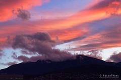 20160612-04-Hobart sunset from the Cenotaph (Roger T Wong) Tags: sunset orange clouds evening australia tasmania hobart cenotaph mtwellington domain 2016 sony2470 rogertwong sel2470z sonyfe2470mmf4zaosscarlzeissvariotessart sonya7ii sonyilce7m2 sonyalpha7ii