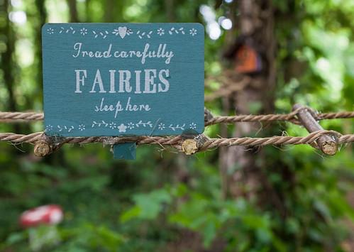 Fairies sleep here