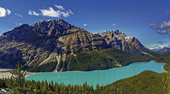 HAPPY CANADAS  DAY (mel hagai photography {been away}) Tags: lake canadas day peyto