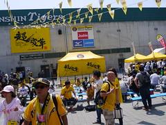 P1030525 (Nog-Z) Tags: stadium tigers hanshin hyogo koshien