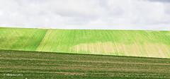 paisaje 83 (rokobilbo) Tags: verde paisaje cielo campo tierras castilla