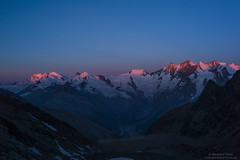 First light on Monte Rosa and Mischabel group at ascent to Fletschhorn N2 (Bernhard_Thum) Tags: alps nature sunrise dom earlymorning monterosa wallis carlzeiss saasfee mischabel zm earlymorningphotos elitephotography landscapesdreams capturenature mountainsandclimbing sonnar852zf