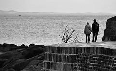 Peace (mnika4) Tags: ocean sea people blackandwhite white black cute love water wall contrast person blackwhite couple candid streetphotography documentary structure cobb lymeregis lyme desaturate