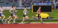 Greeves (stevennokes) Tags: woman field athletics birmingham track meadows running smith mens british hudson sainsburys asher muir hurdles rooney 100m 200m sprinter 400m 800m 5000m 1500m mccolgan twell