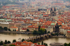 Praga desde las alturas (oye chico) Tags: roof house tree vertical architecture outdoors photography community prague dusk tranquility nopeople czechrepublic oldtown crowded distant capitalcities traveldestinations colorimage buildingexterior highangleview nauticalvessel