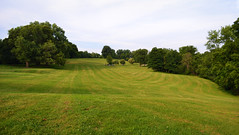 Frick Park (Sara Thorson) Tags: park usa tree green field grass america landscape nikon pittsburgh unitedstates pennsylvania widescreen pa 1855mm nikkor 169 vr afs frick  dx   13556g d3100