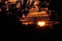 Carrollton dawn