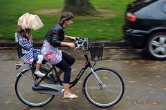 herfst (Don Pedro de Carrion de los Condes !) Tags: wind herfst regen fietsen fiets donpedro