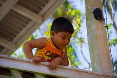 Belem out-2013-0187 (caroldantas33) Tags: brasil natureza selva criana ros indios floresta par belm aa