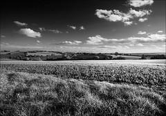 a slice of local landscape (rockstro) Tags: herefordshire canonef1740f4l canon5dmkiii