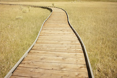 Boardwalk to the water's edge... (Trapac) Tags: california wood travel autumn usa tourism walking wooden boards nikon view path pedestrian route walkway boardwalk elevated nikkor monolake viewpoint footpath tufa planks pathway touristattraction raised accessible wmh monocounty nikkor3570mm alkalinelake d700 nikond700 monolaketufastatenaturalreserve flickrcollectionongetty tracypackerphotography wwwtracypackercom statereserveboardwalk gettymomentcreativecollection