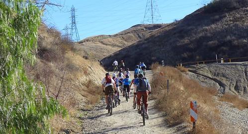 Mountain bike kids!