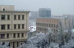 Today, 5 dec. 2013 (Vladi_L) Tags: snow kazakhstan almaty nikkor50f18 nikkor5018 nikond80