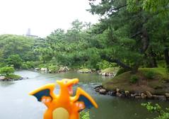 Charizard in Hiroshima, Hiroshima 4 (Shukkei-en Garden) (Kasadera) Tags: toys hiroshima figure pokemon pokmon  charizard   glurak  shukkeiengarden pokemonkids   dracaufeu
