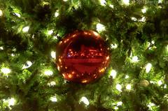DSC_7233.jpg (Seg Fault) Tags: sanfrancisco christmas xmas christmaslights financialdistrict ornament unionsquare fidi