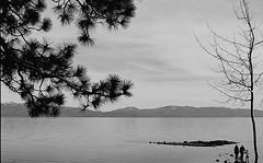 Delta0100035 (caminti) Tags: bw film tahoe 135 delta100