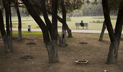 Bench Press (Shubh M Singh) Tags: india man face rose garden bench solitude alone dusk no sit figure lonely punjab press chandigarh