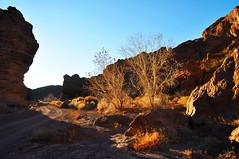 San Lorenzo Canyon (Shay Kelley) Tags: sanlorenzo
