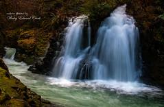 Upper Abiqua Falls I (Photos by Wesley Edward Clark) Tags: oregon silverton waterfalls molalla scottsmills abiquafalls