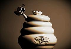 Honey jar (Lazy1255) Tags: white black cute grey shadows bee honey jar