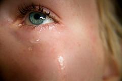 Last+Cry