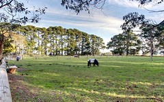 1311 Brookman Road, Dingabledinga SA