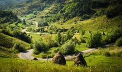 Maramure (Jos Mecklenfeld) Tags: road landscape boat romania weg konicaminolta maramures roemeni karpaten romnia konicaminoltadynax5d muniicarpai maramure bocicoel