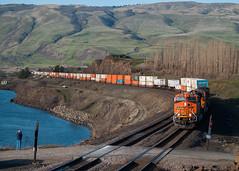 BNSF Intermodal And The Train Spotter (PNW Rails Photography) Tags: railroad nature washington unitedstates columbia gorge bnsf dallesport